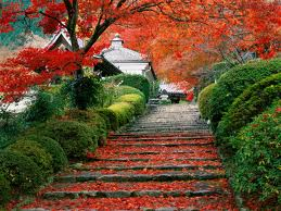 Kyoto Gardens (Photo Source: worlfortravel.com)