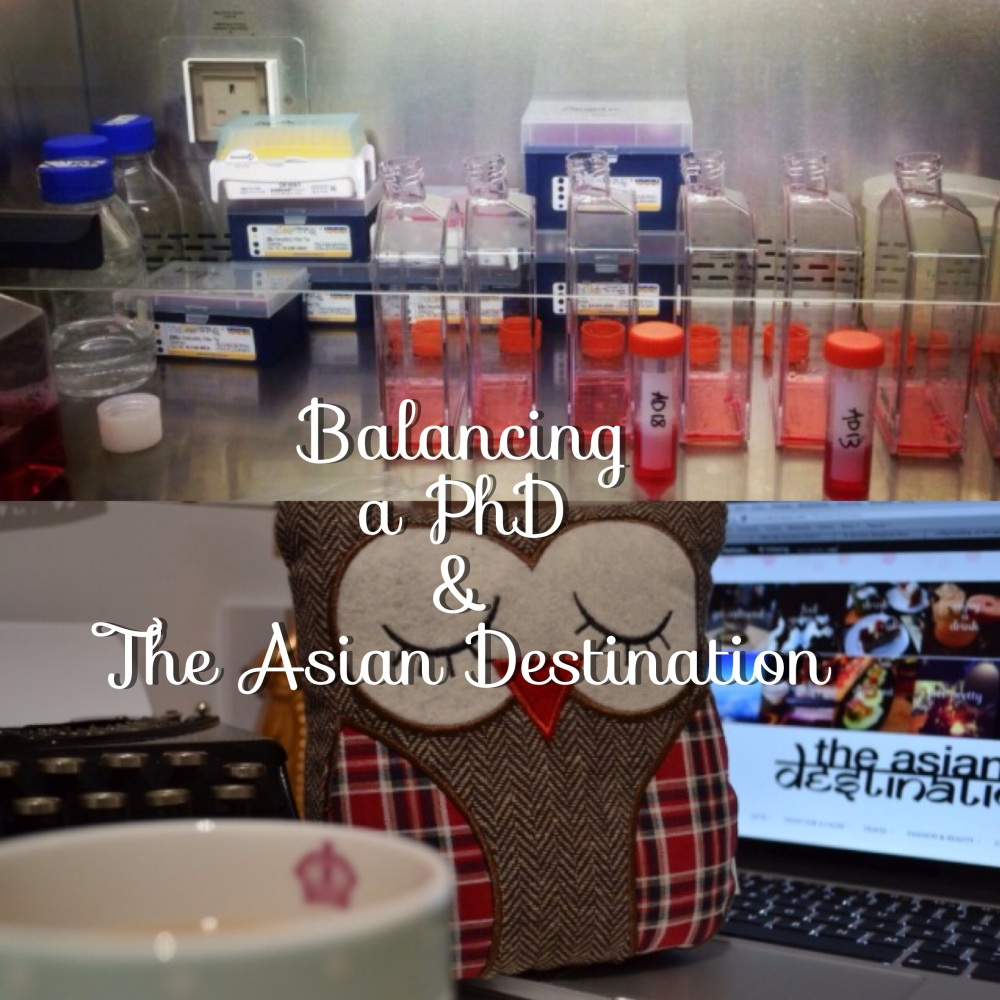 The Asian Destination :: Balancing a PhD and The Asian Destination